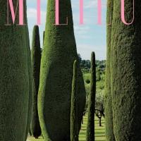 Milieu - Summer 2017