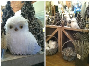 white owl collage