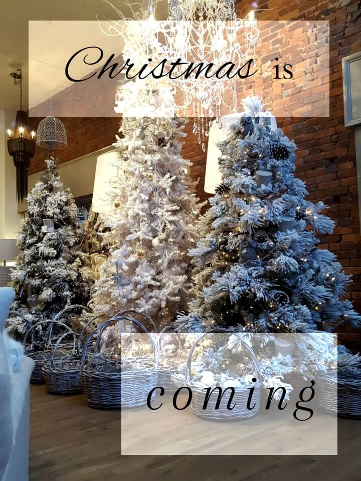 Christmas is Coming!